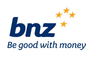 Image result for bnz bank small logo